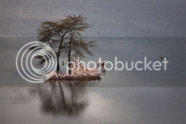 photo Suha-Derbent-4_zps1f5badd8.jpg