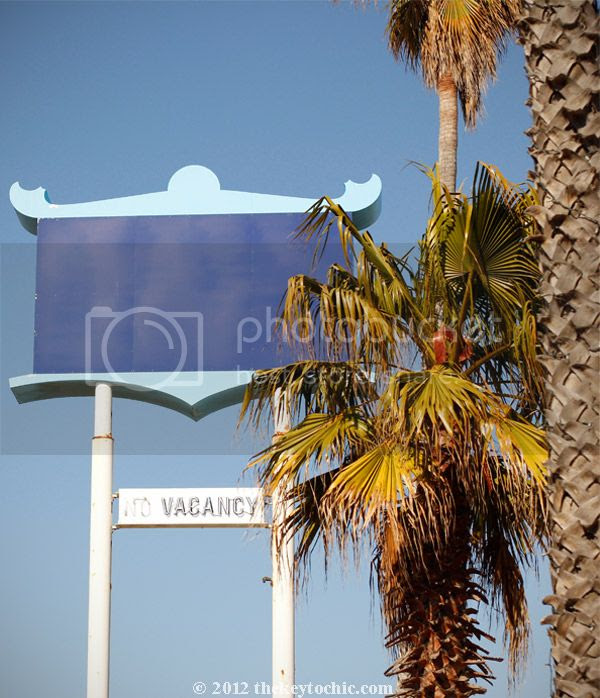 southern California plam trees, motel