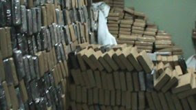 Spain police seize 4 tonnes of cocaine in cow hide shipment