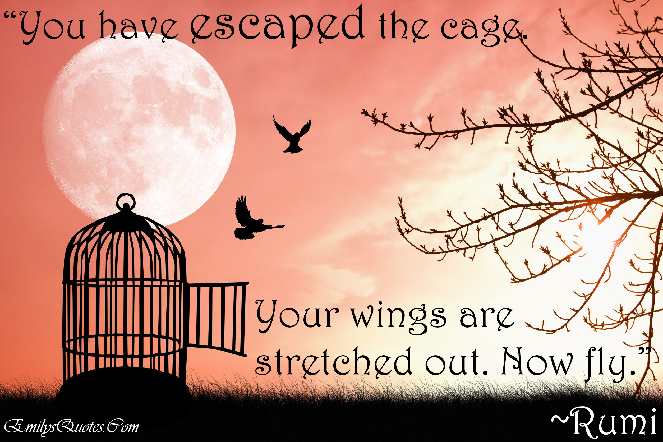 You Have Escaped The Cage Your Wings Are Stretched Out Now Fly