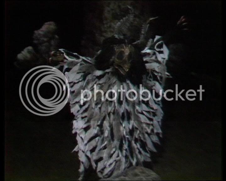ritualistic crow costume