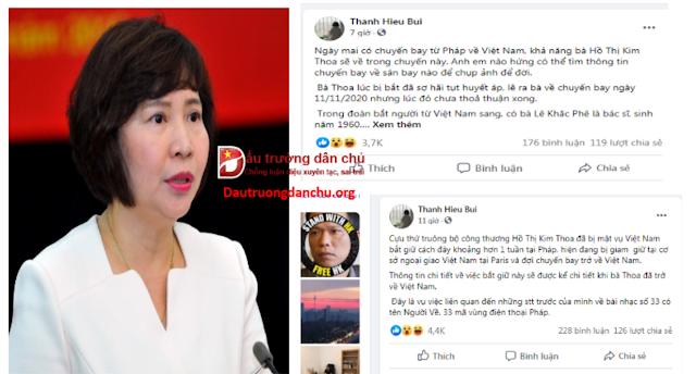 Việc bắt giữ và dẫn độ Hồ Thị Kim Thoa có gì mà Bùi Thanh Hiếu phải la làng?