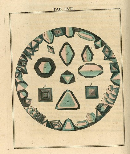 Amusement microscopique MF Ledermuller 1766 3