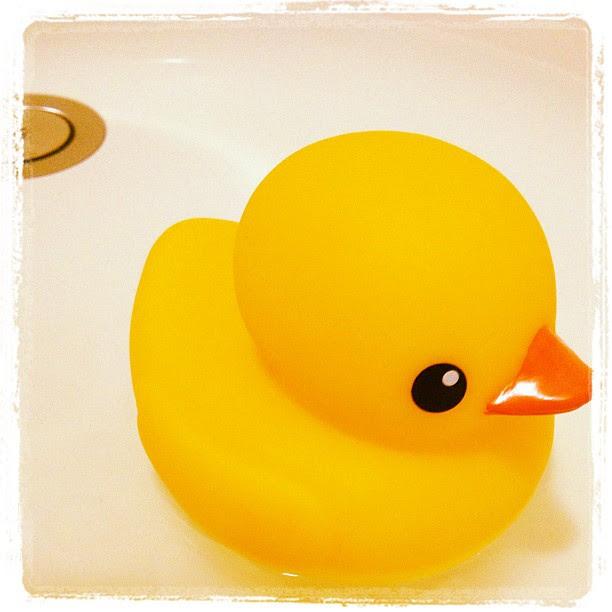 配合高雄小黃鴨,我家也來一隻了!