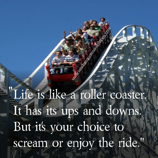 Life Is Like A Roller Coaster Wisdom Quotes Stories