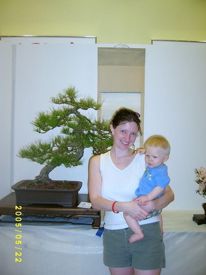 P&G at bonsai show