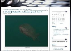 image-capture-ecran-site-fredheas-poisson-lac-fond-gris