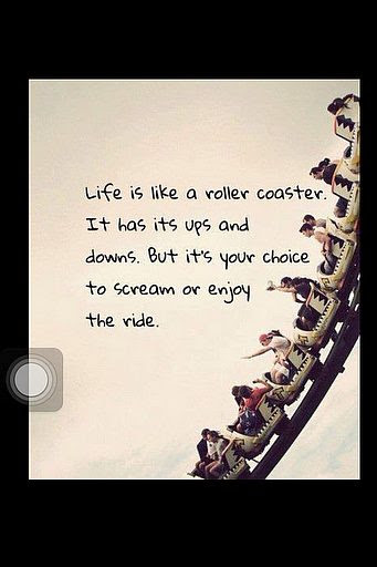 Roller Coaster Quote Picture