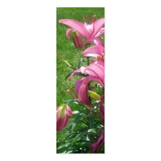Pink Asiatic Lilies Bookmark profilecard