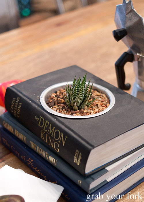 succulent growing in book at in the annex cafe, forest lodge, glebe