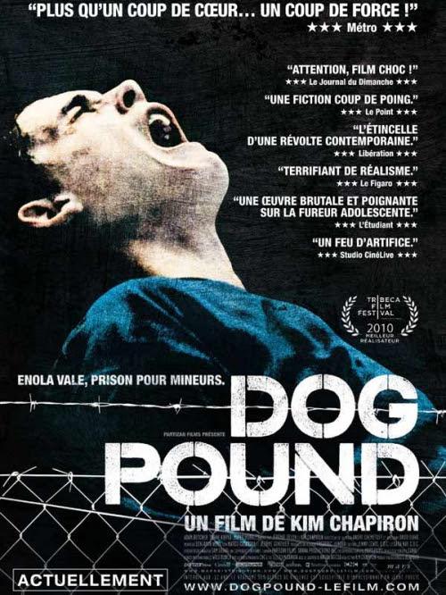 dog pound.jpg