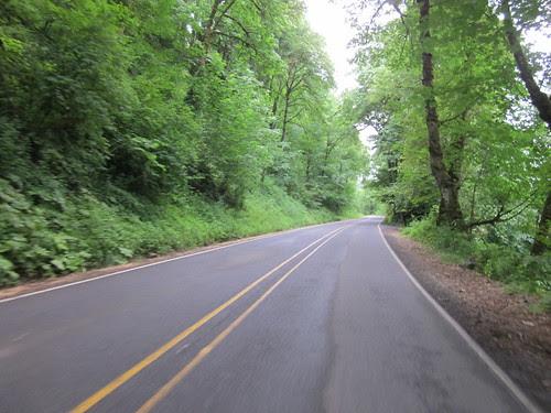 Clackamas River Road