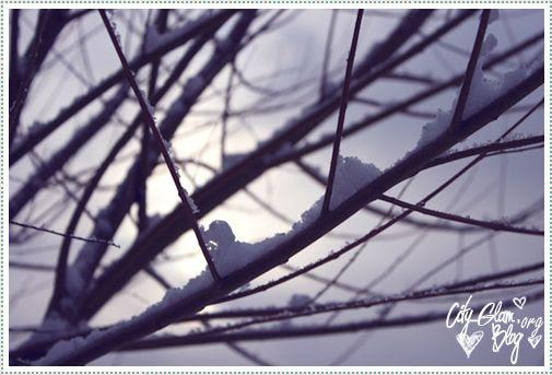 http://i402.photobucket.com/albums/pp103/Sushiina/Daily/snow1.jpg