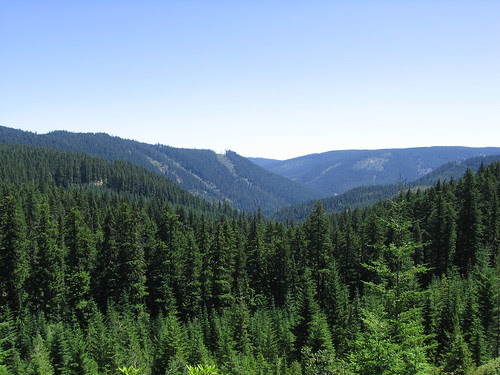 Valley of the Clackamas.JPG
