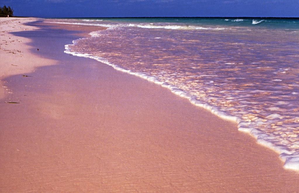 Bahamas 1989 (348) Eleuthera: Pink Sand, Harbour Island