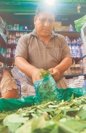 La coca se vende como 'Pan caliente' en la capital Cruceña