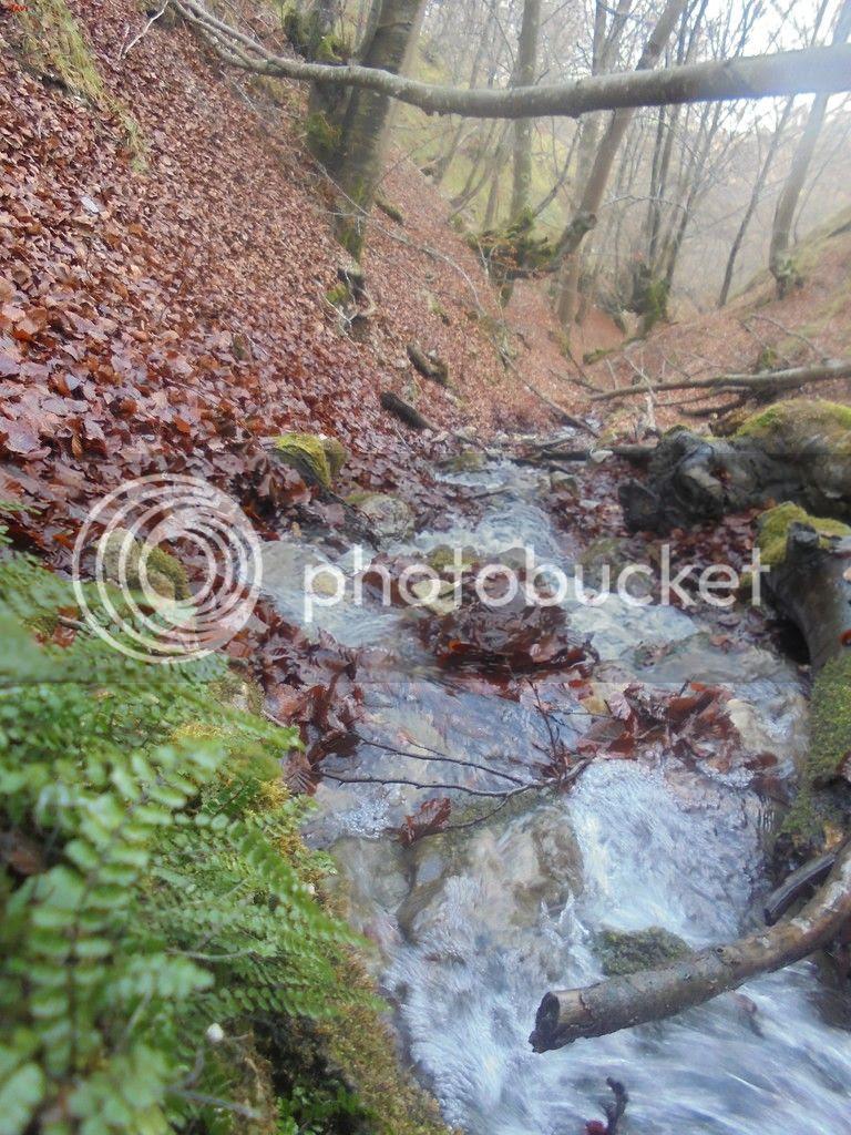 photo SAN DONATO 12-12-15 118_zpswbkmnzkp.jpg