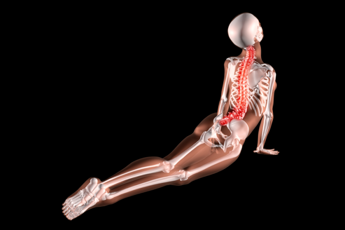 x-ray of a person taking part in a yoga pose