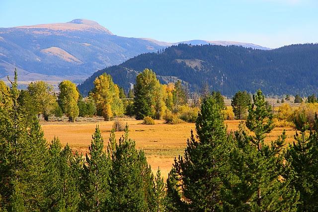 IMG_8277 Taggart Lake Trail, Grand Teton National Park