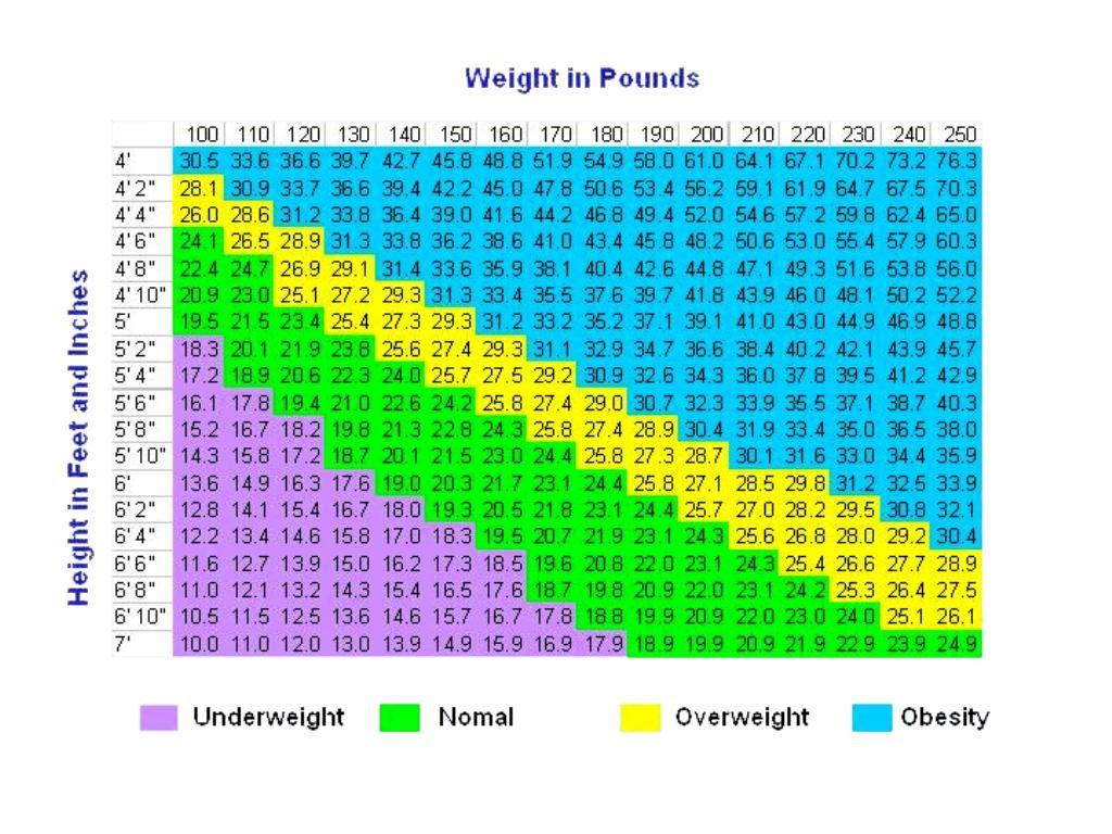 body fat percentage men calculator