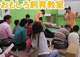 siiku_class.jpg