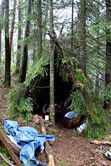 Wildernes Survival Shelter