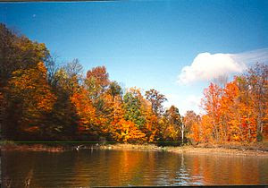 Fall at Alum Creek State Park