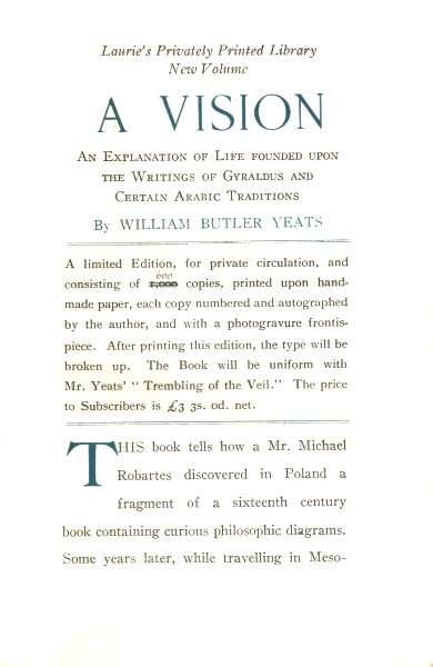 Laurie's Prospectus for A Vision