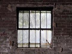 mule barn window