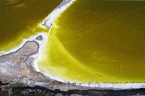 634878940748600000 Tuyệt vời sắc màu của ruộng muối ở San Francisco