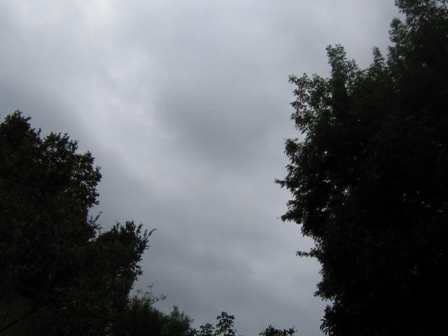 3.10 My Sky