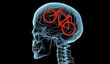 La bicicleta es buena para el cerebro