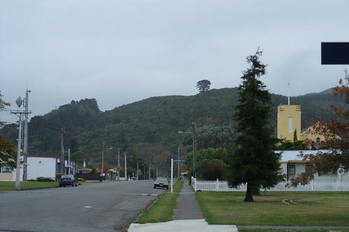 NZ 003