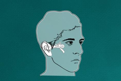Vea el gráfico sobre la audición y cómo funciona el implante coclear.   Gracia Pablos