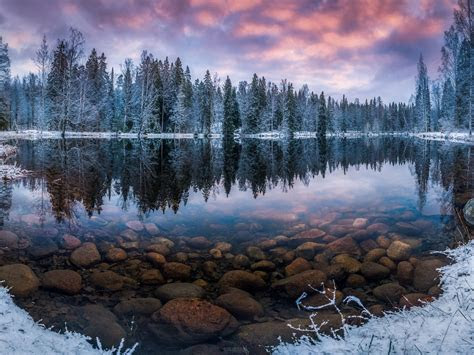 finland nature landscape winter snow morning sunrise