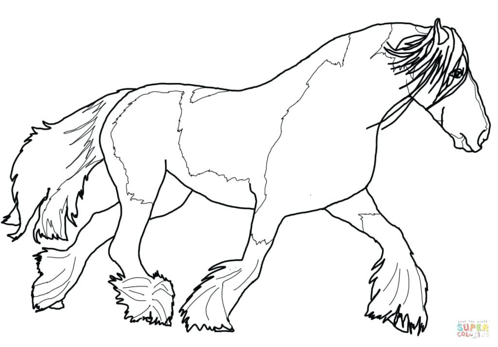 Morgan Horse Coloring Pages at GetColorings.com | Free ...