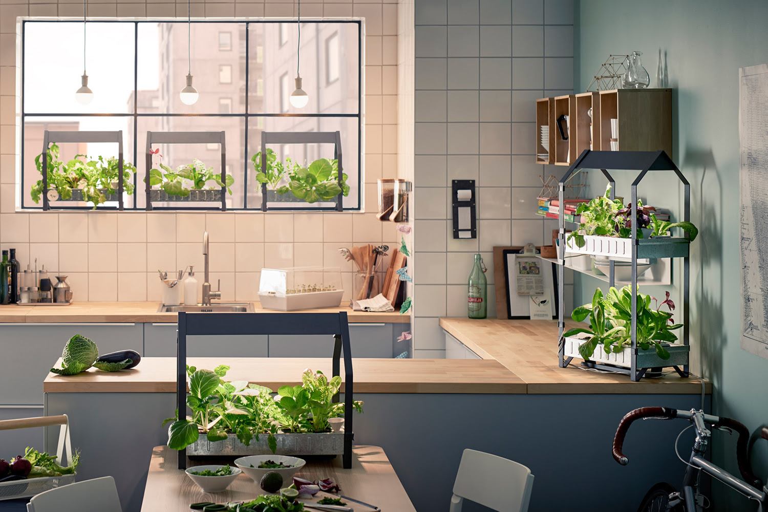 Eight Devices to Help You Grow a Garden Indoors   Digital ...