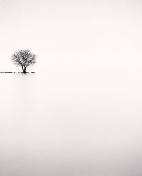 eclats-de-vers:    © Michael Kenna