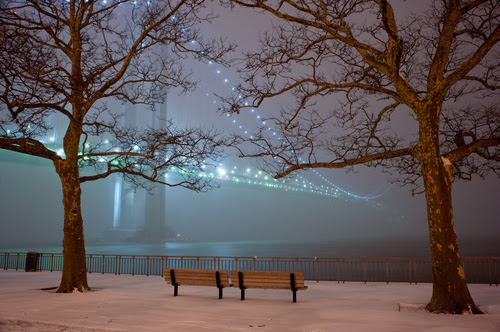 bench, bridge, lights, nature, new york, park
