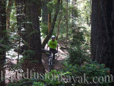 Rare Mendocino Coast sighting - Jeff mountain biking.