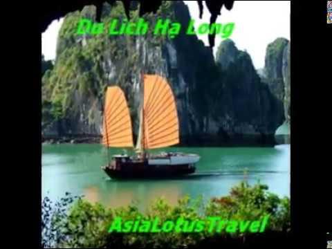 Hợp tác cùng cty Hoa Sen Châu Á