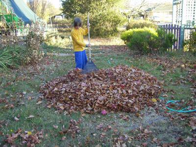 raking 4