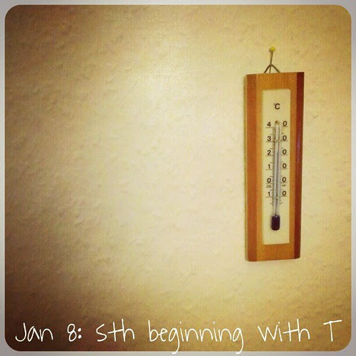 "Jan 8: something beginning with ""t"".. #fmsphotoaday #thermometer"