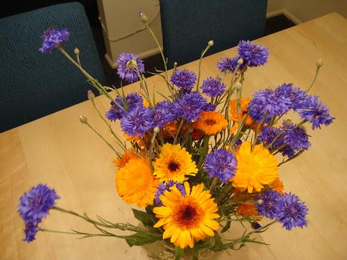 6/9/11 farmer's mrkt flowers
