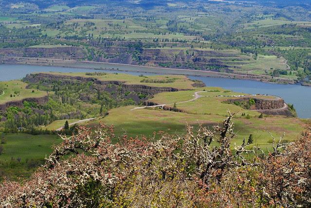Tom McCall Preserve - Eastern Columbia River Gorge