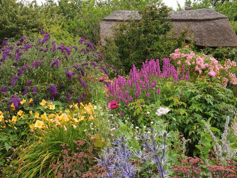 cottage_garden_361237688_768