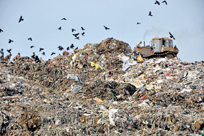Image result for meethotamulla garbage mountain