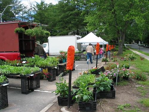West Hartford Farmer's Market