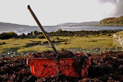 Argyll News: Ulva: the marriage of history, culture, school ...