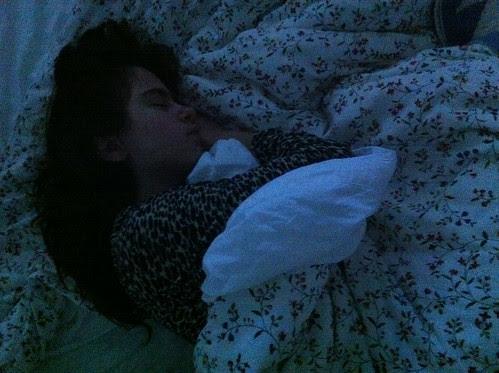 Sycamore snoozer 2